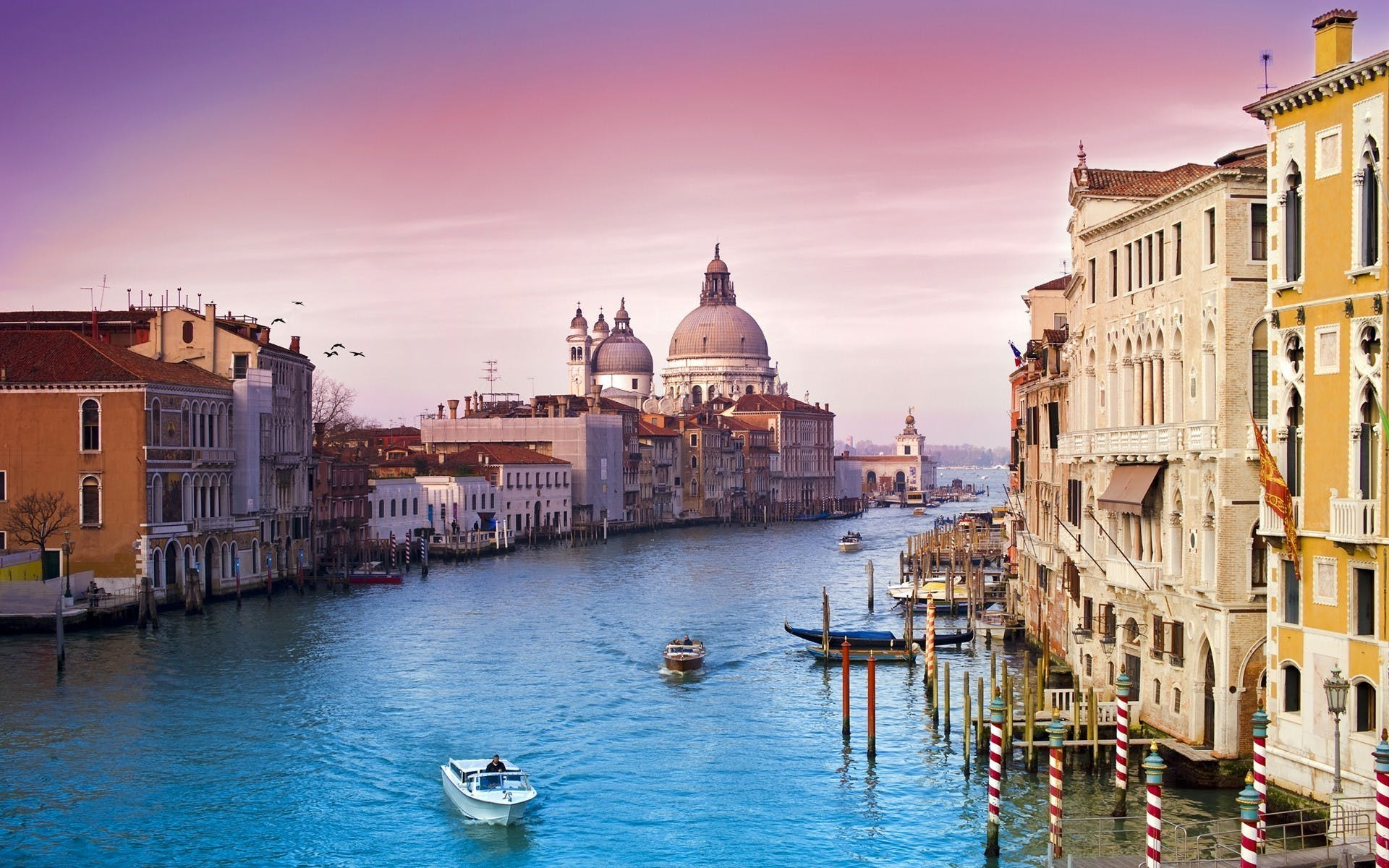 Boat Tours in Venice
