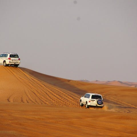 Desert Safaris in Dubai