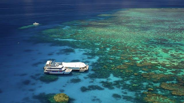 002 Cairns: Cruises - cairns