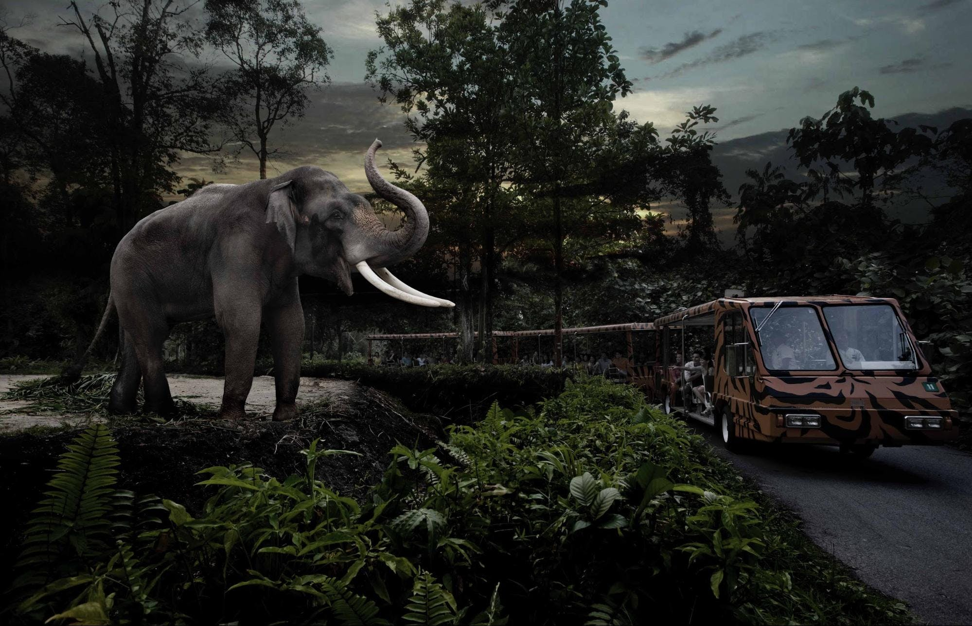 Best Things to do in Best Things to do in Singapore - Singapore Night Safari  - 3