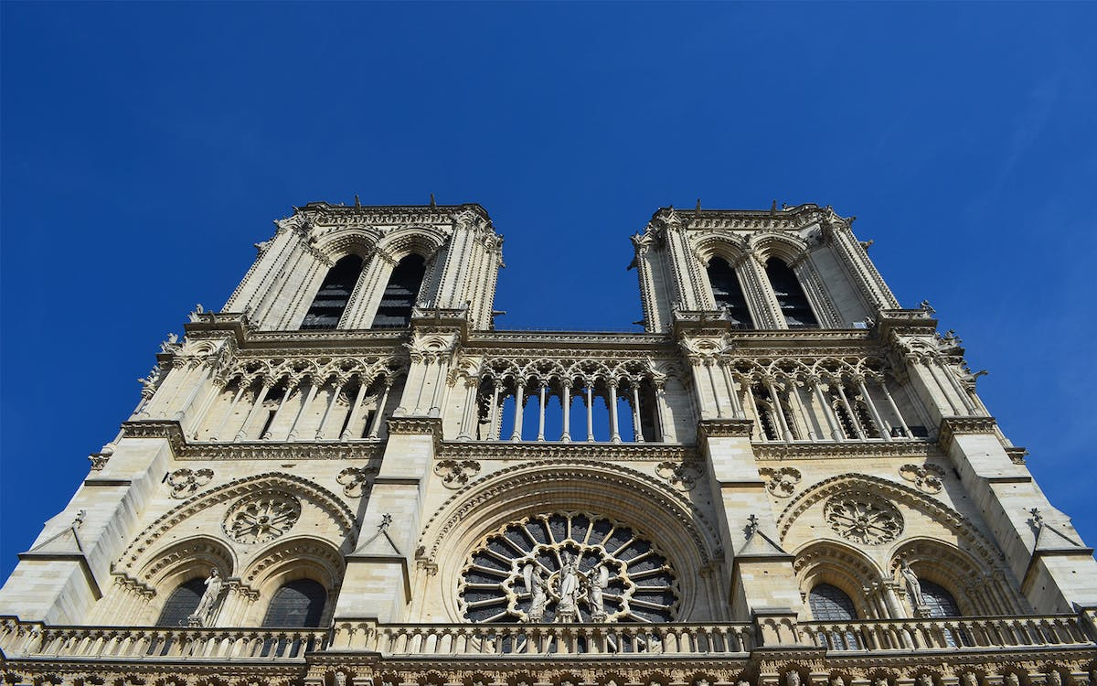 notre dame cathedral 1 hour guided tour-1
