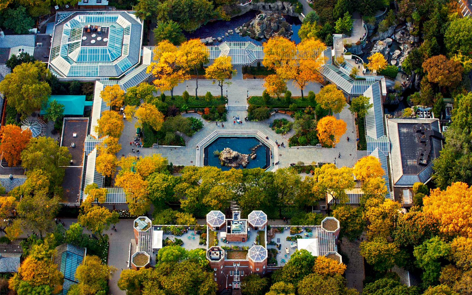 Aerial Photography: New York and Beyond with Pro Photography Instructor