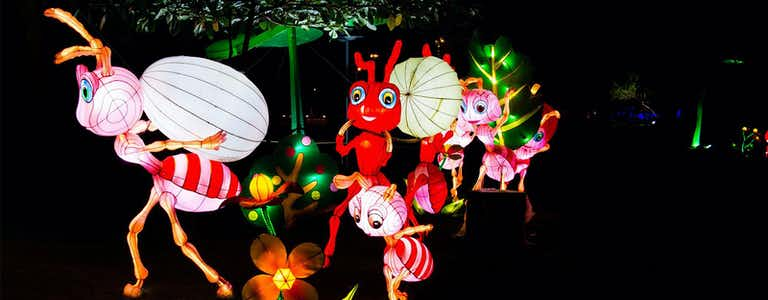 Dubai Garden Glow Tickets Offers Exhibits Visitor Info More