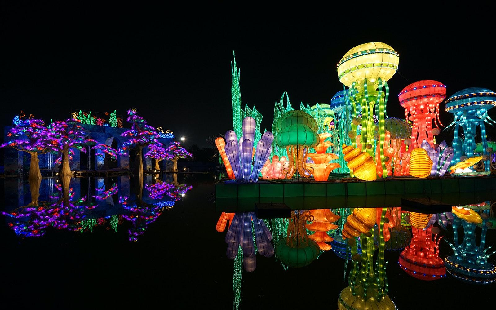 Dubai Garden Glow   2