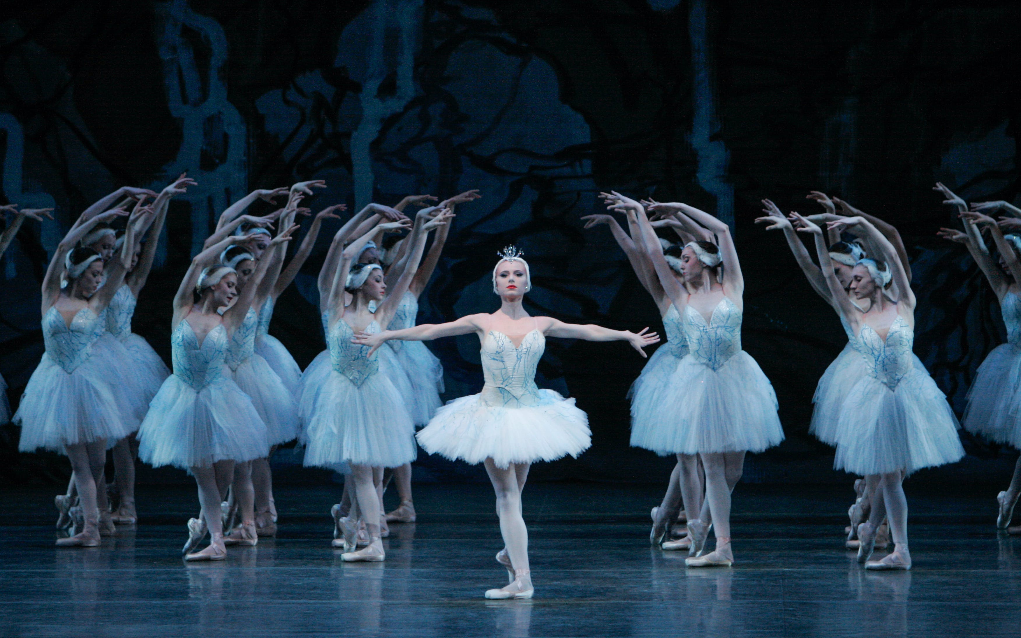 Planning a trip to NYC - Metropolitan Opera Swan Lake