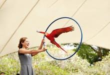 Jurong Bird Park singapore-1