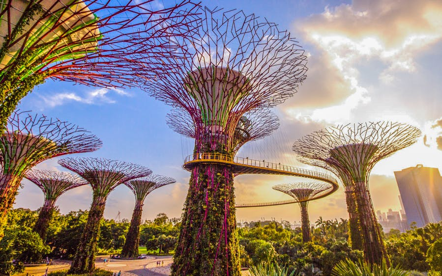 gardens by the bay direct entry tickets-0