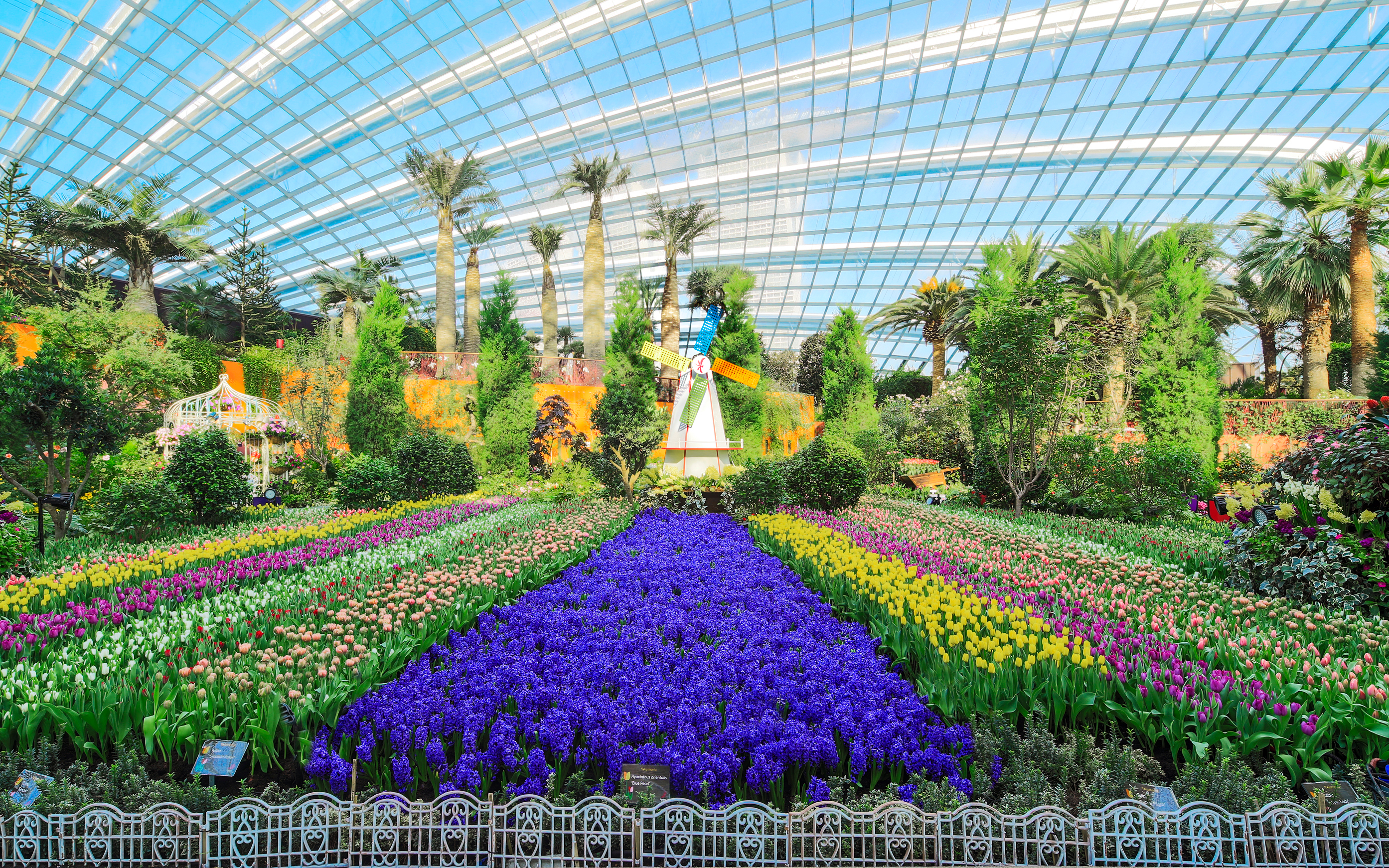 Garden By The Bay Flower skip the line: gardensthe bay flexible entry tickets | headout