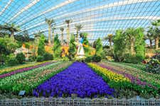 Best Things to do in Singapore - Gardens by the Bay - 3