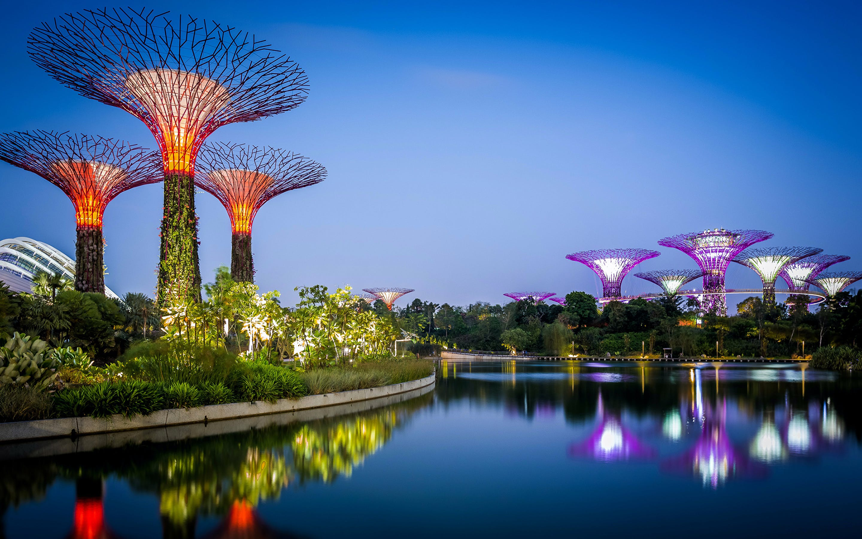 gardens by the bay supertree grove