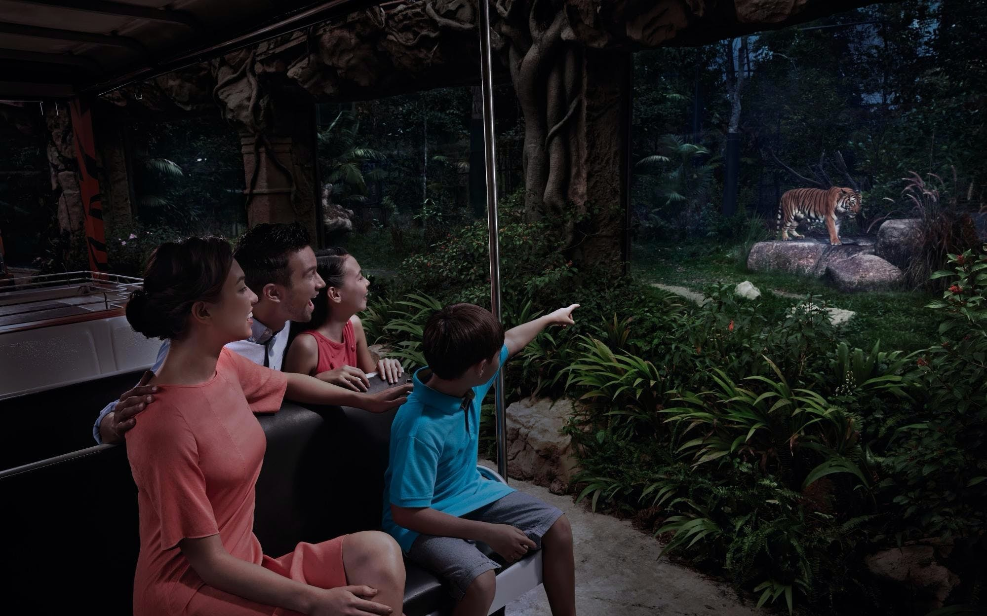 Singapore Night Safari with Hotel Transfers