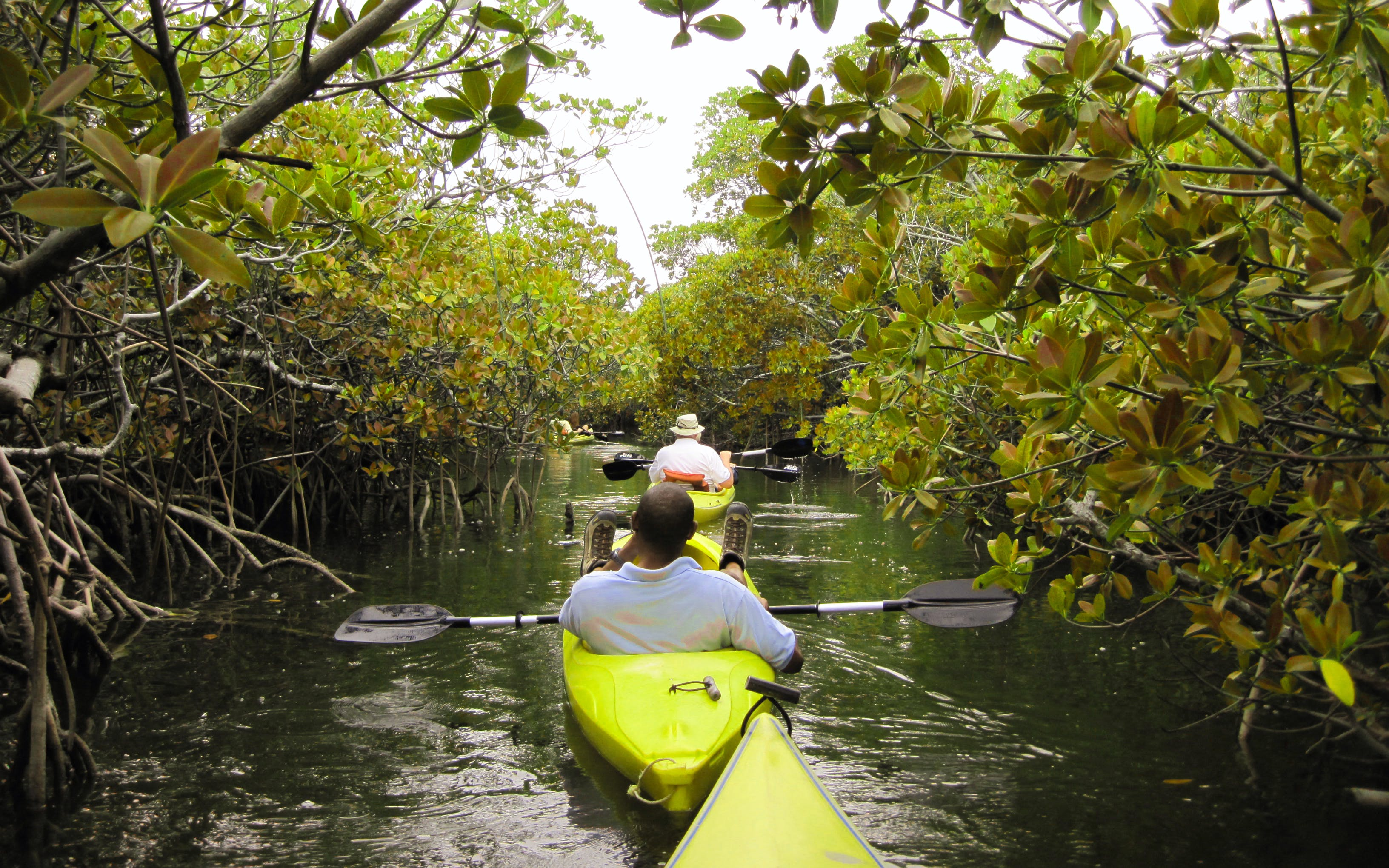 Kayaking at Pulan Ubin - 5 day Singpaore itinerary