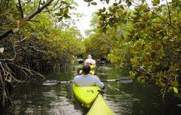 Kayaking at Pulan Ubin - 5 day Singpaore itinerary
