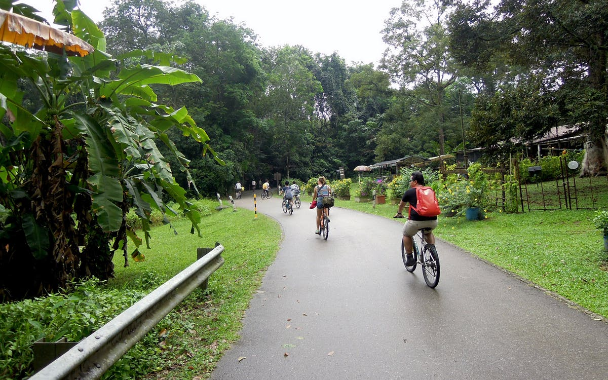 ubin biking adventure-3