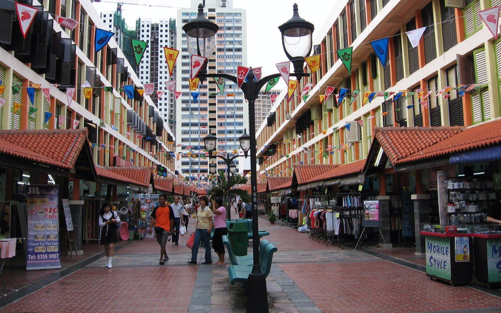 Singapore Up Close Walking Tour - 1