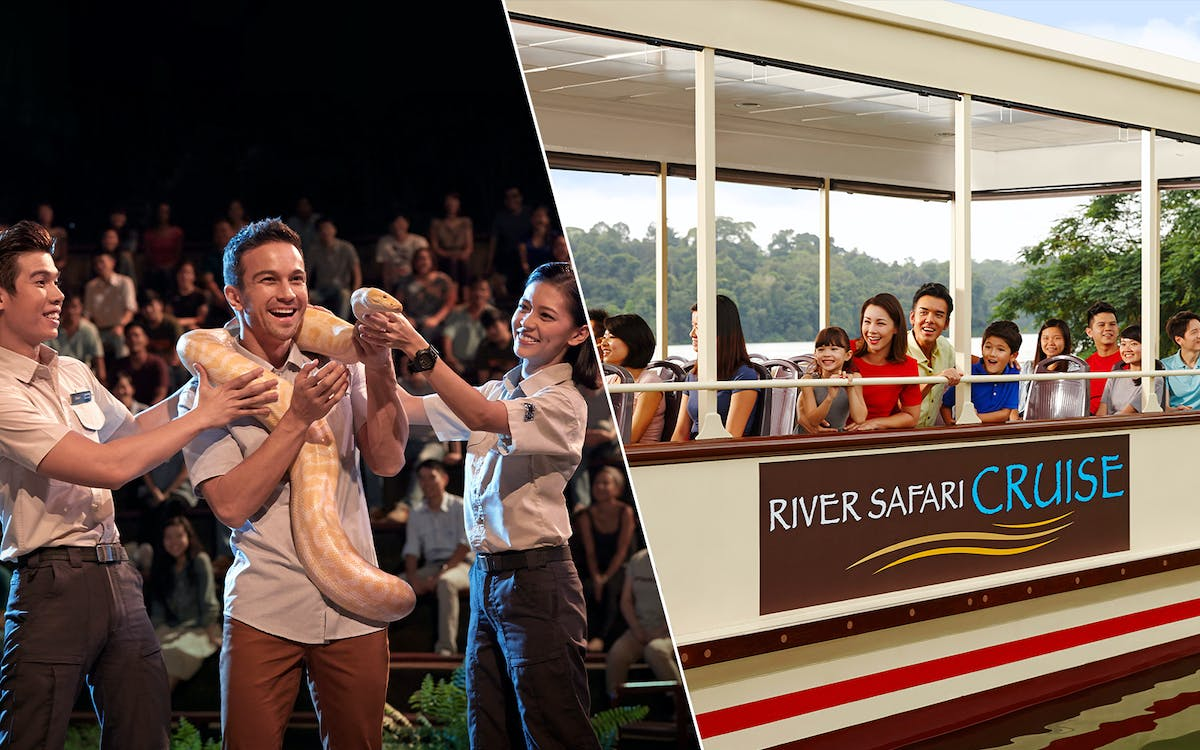 super saver combo: night safari + river safari-1