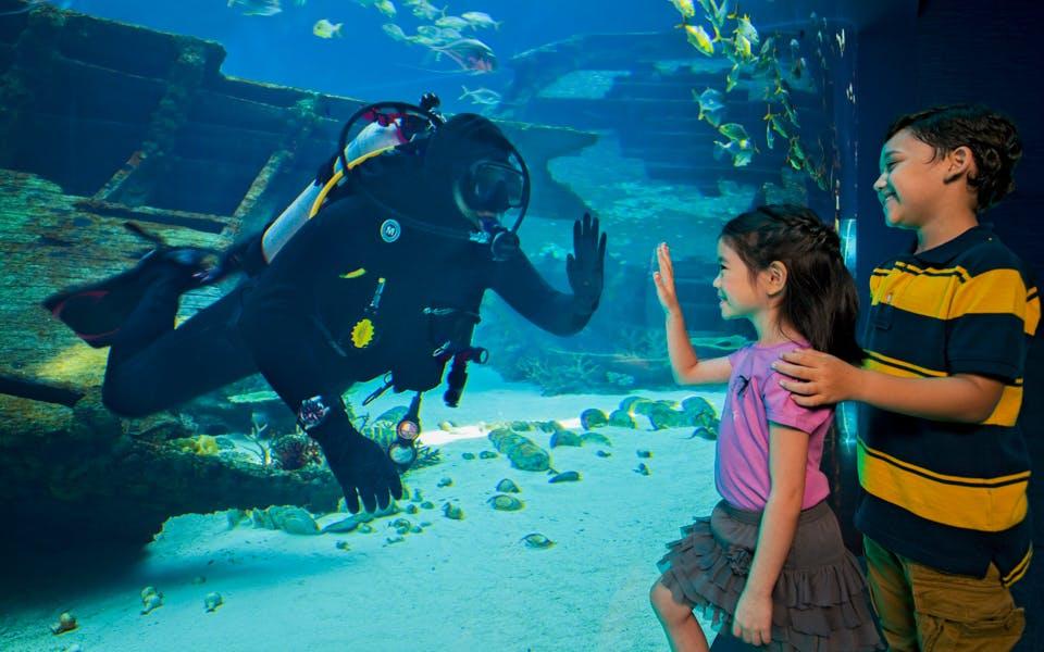 s.e.a aquarium™ tickets-1