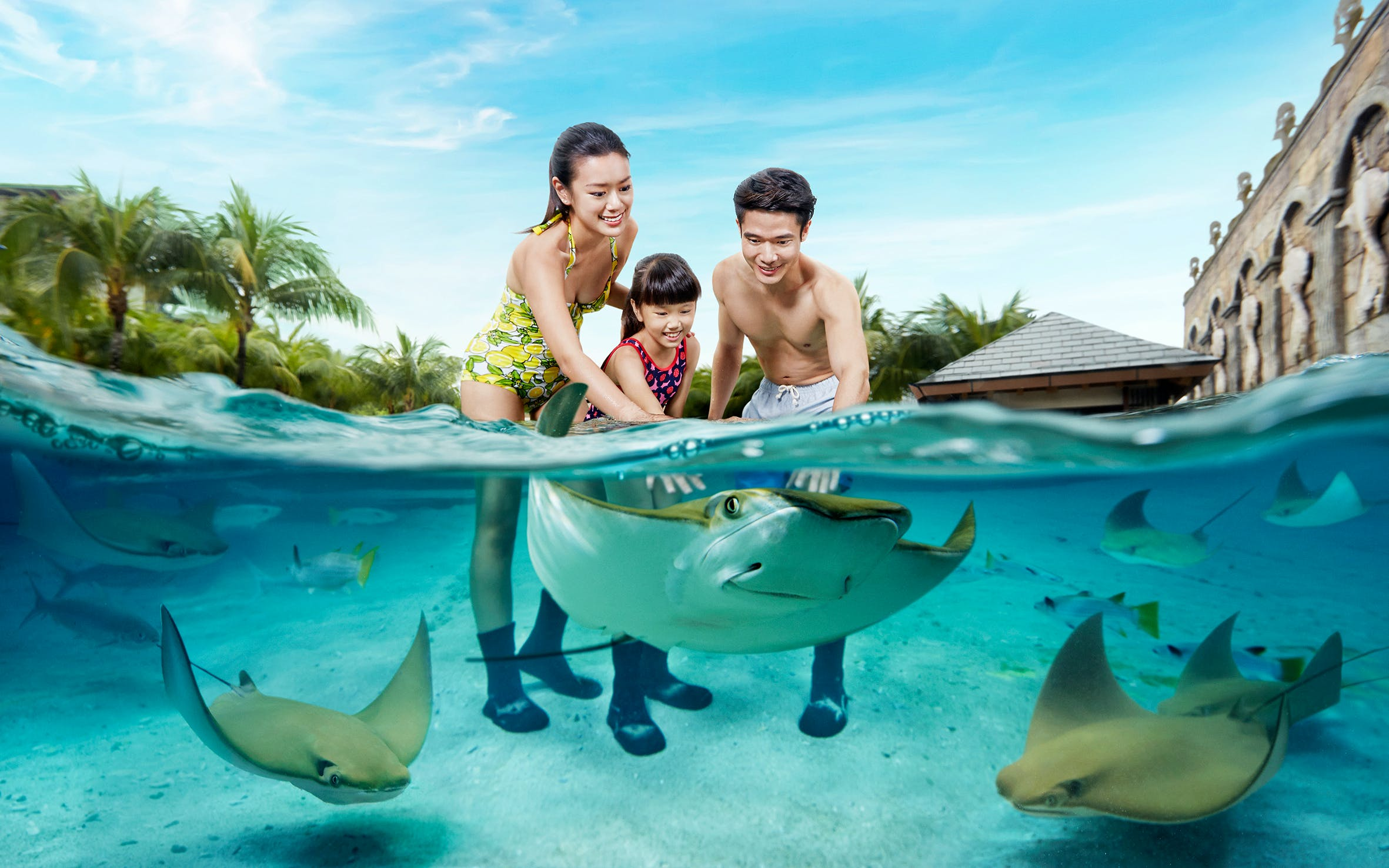 skip the line Adventure Cove Waterpark tickets
