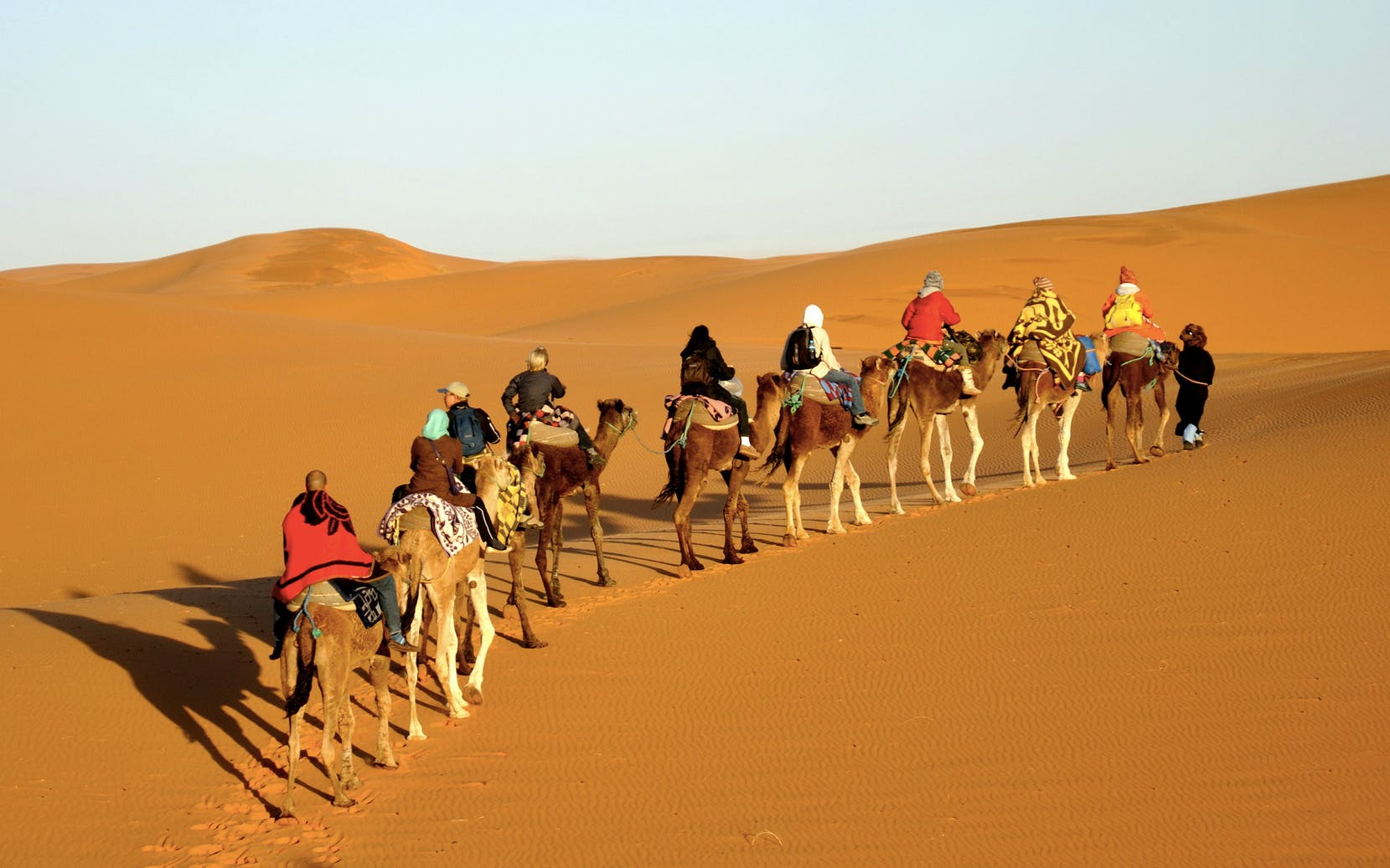 camel trekking with private transfers-2