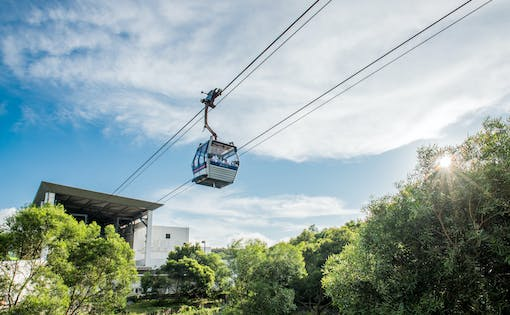 360 Lantau - Sky, Land and Sea Explorer's Day Pass