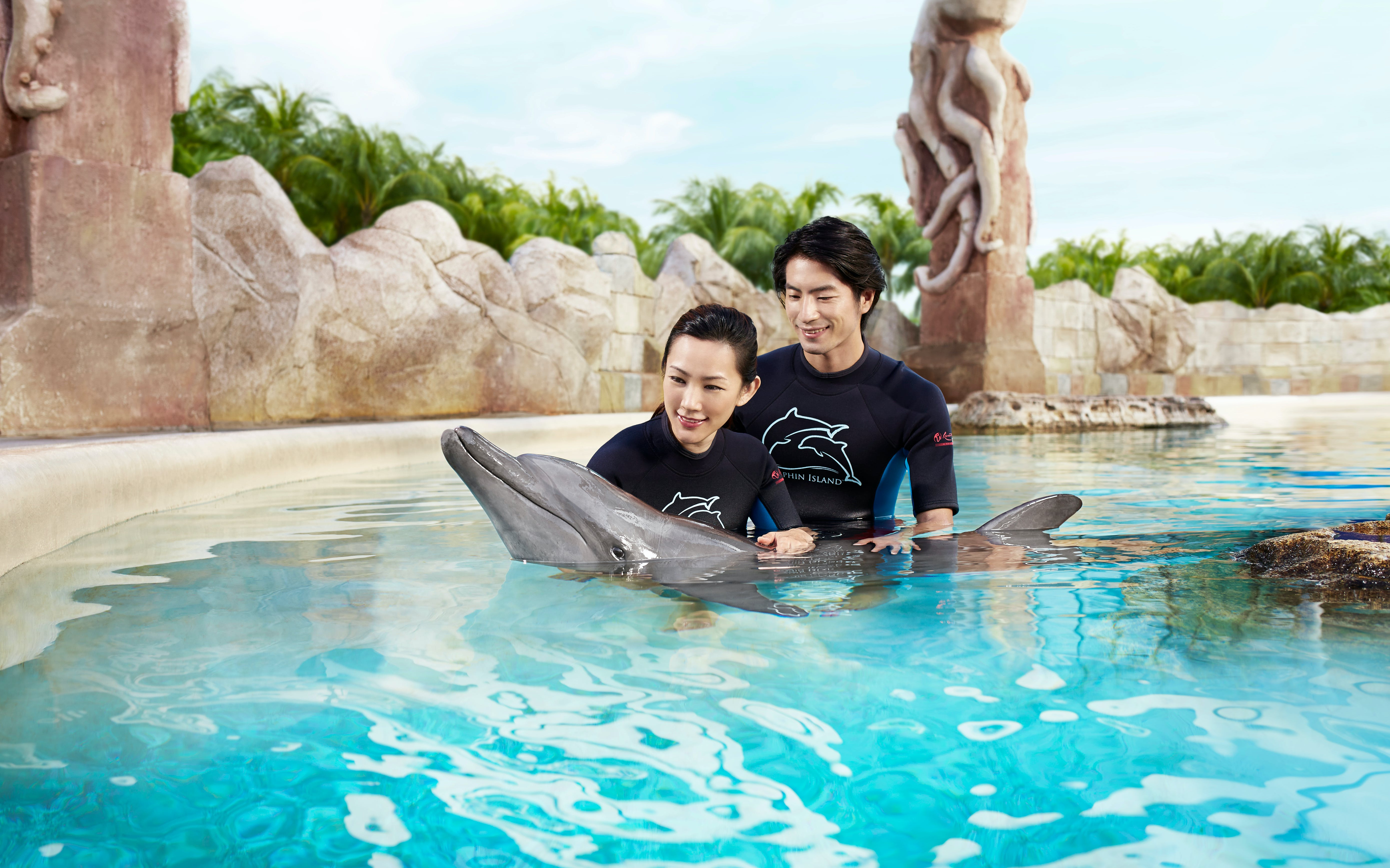 Dolphin Discovery Experience with Adventure Cove Waterpark Tickets
