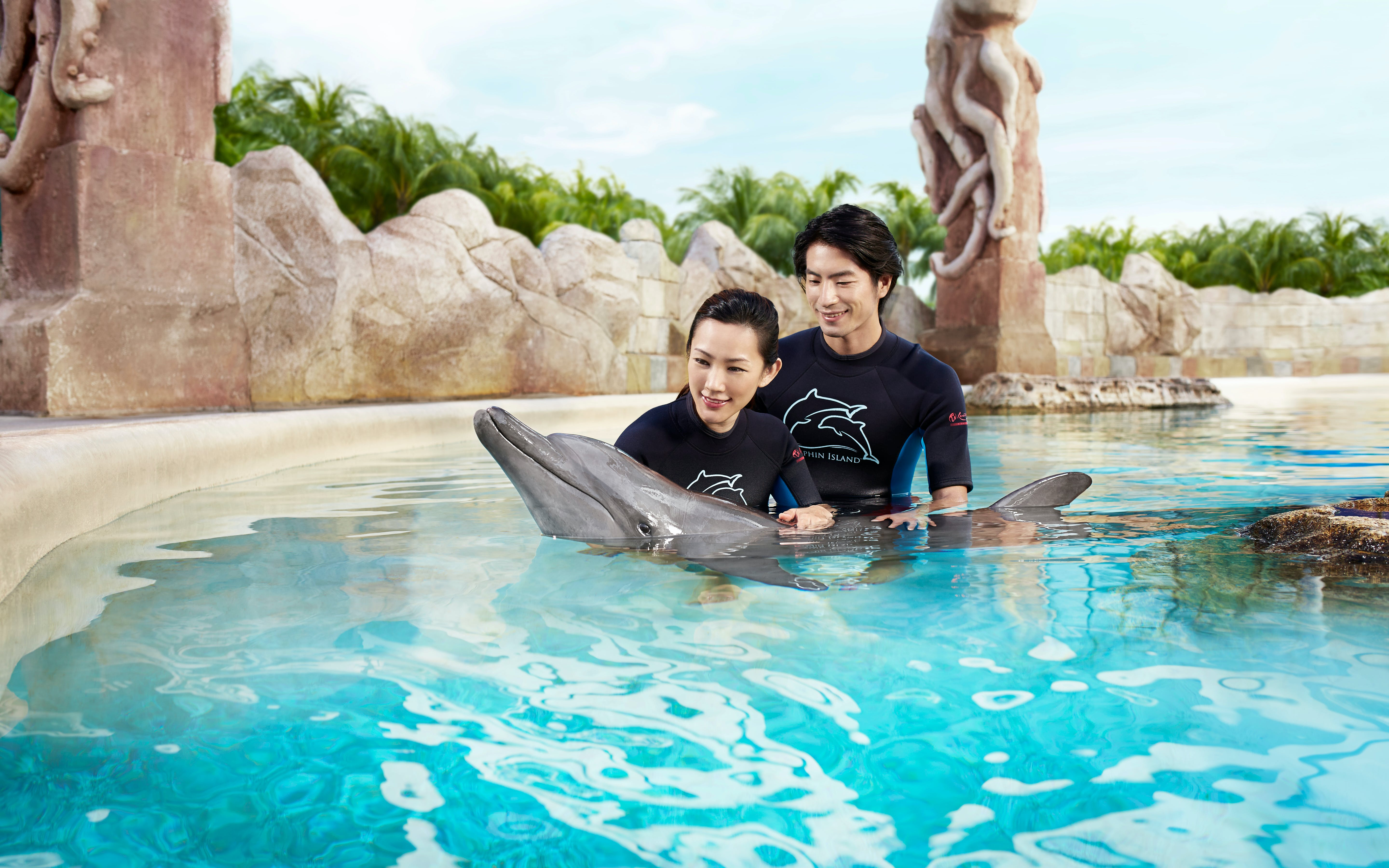 dolphin discovery experience with adventure cove waterpark tickets-2