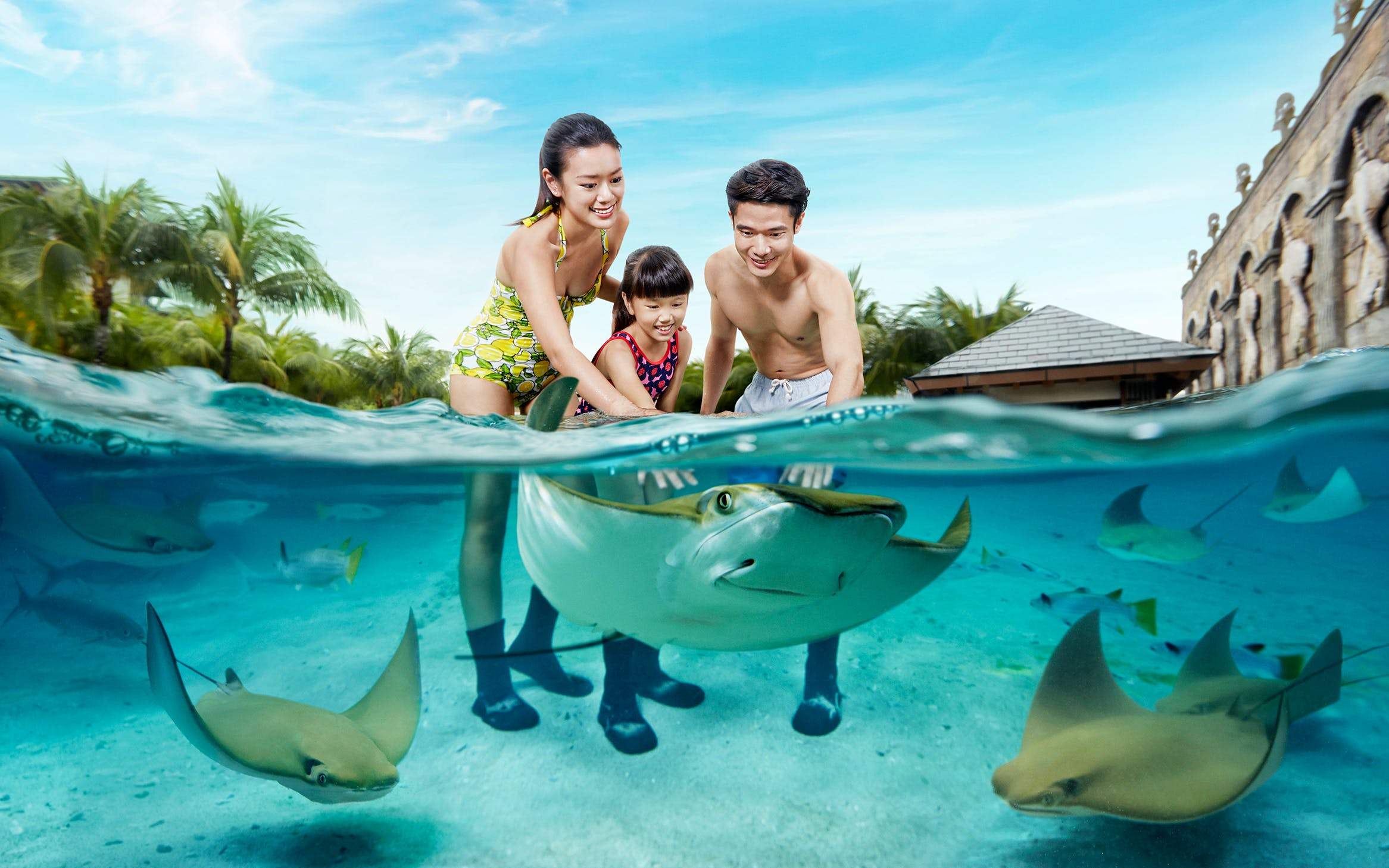 Super Saver Combo: Universal Studios Singapore + Adventure Cove Waterpark