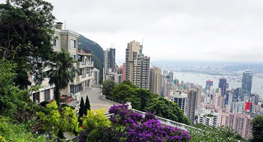 Discover Hong Kong by Land and Sea with a Guide