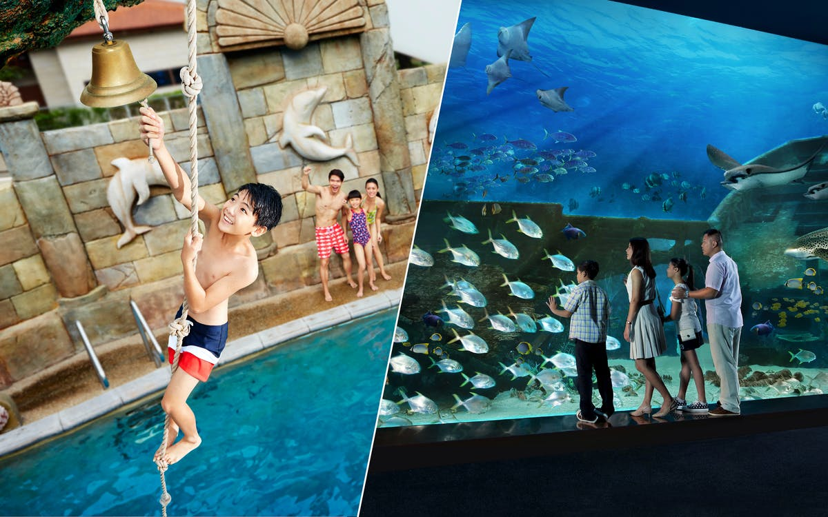 marine life park ticket: s.e.a aquarium + adventure cove waterpark-1