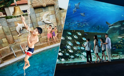 Marine Life Park Ticket: S.E.A Aquarium + Adventure Cove Waterpark
