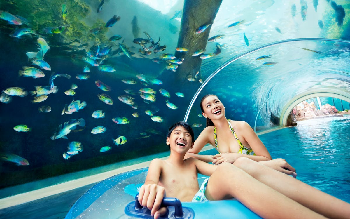 marine life park ticket: s.e.a aquarium + adventure cove waterpark-2