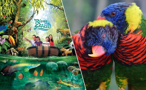 Super Saver Combo: River Safari + Jurong Bird Park