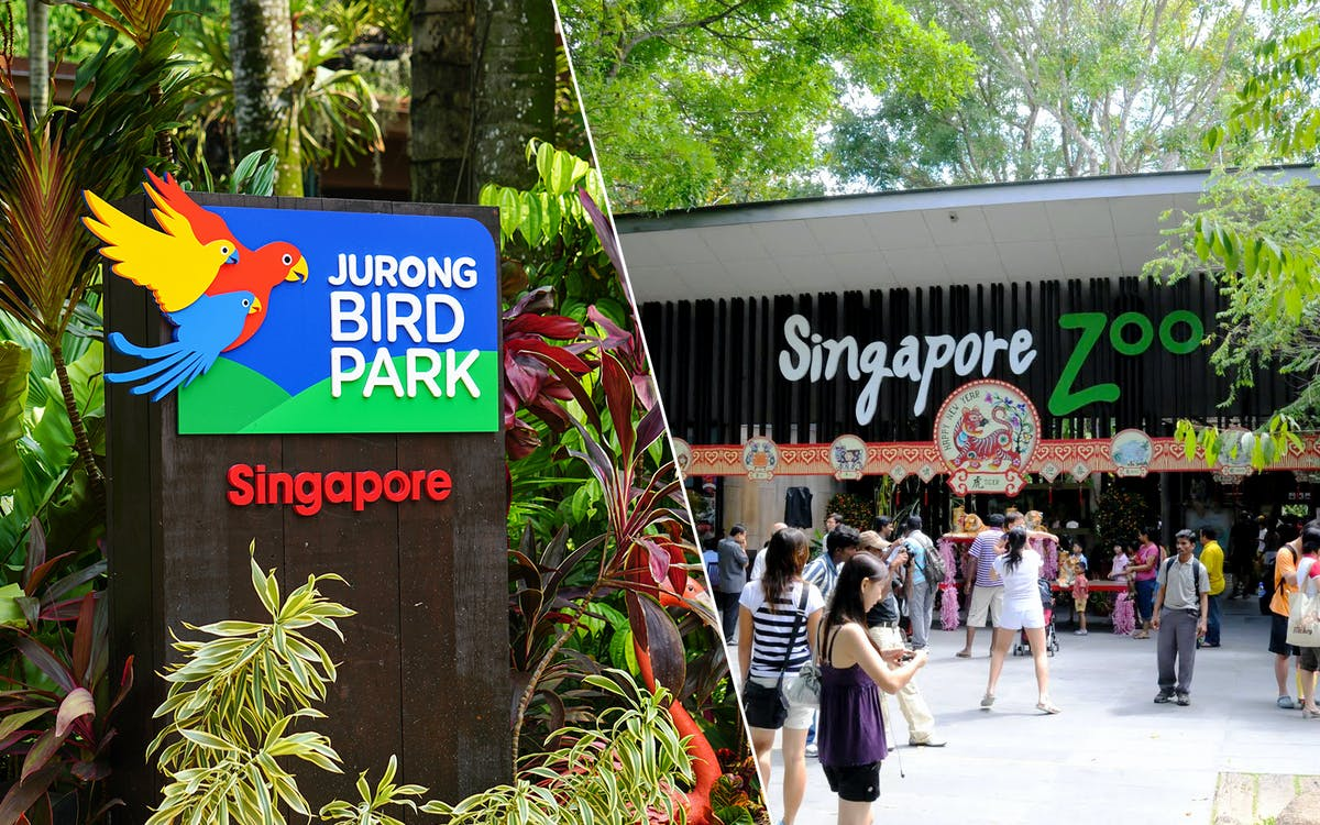 super saver combo: jurong bird park + singapore zoo-1