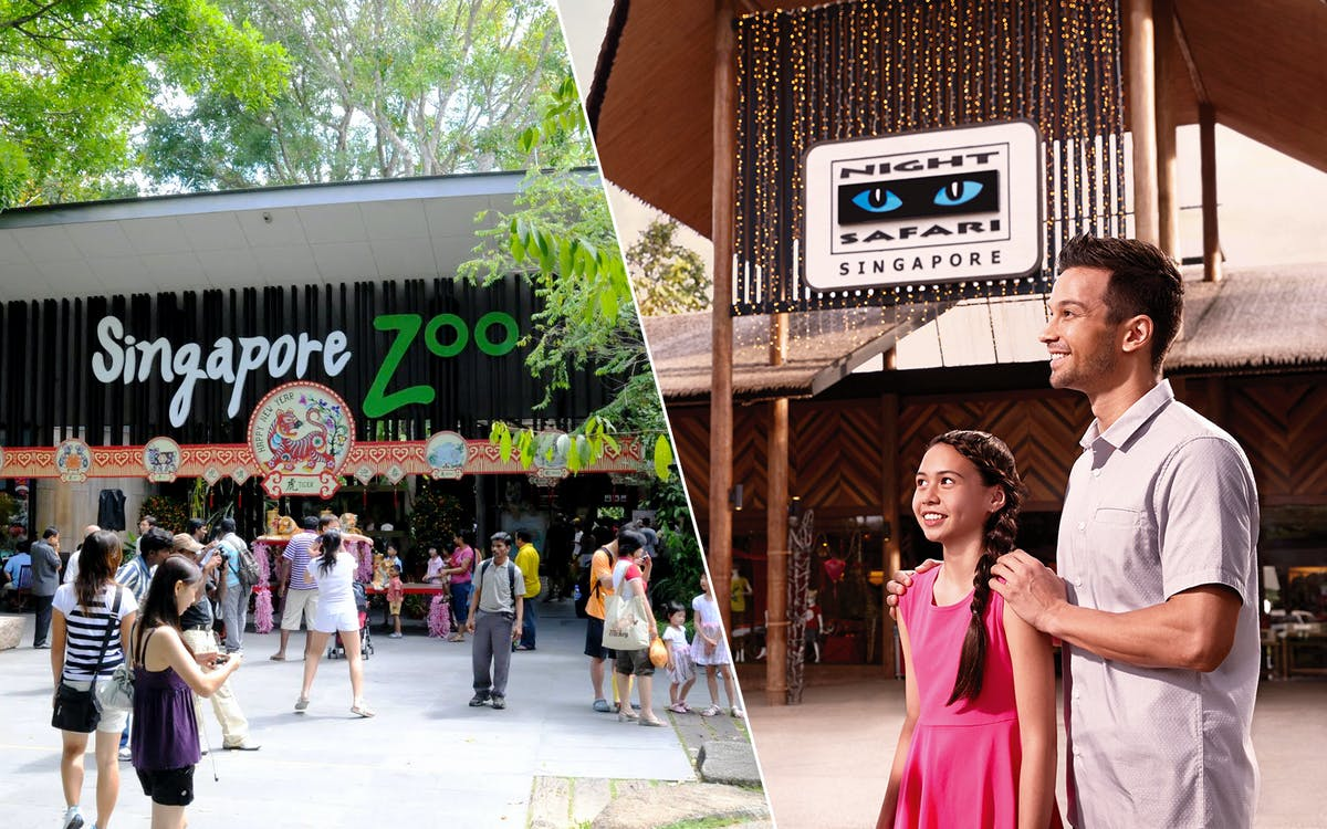 super saver combo: singapore zoo + night safari-1