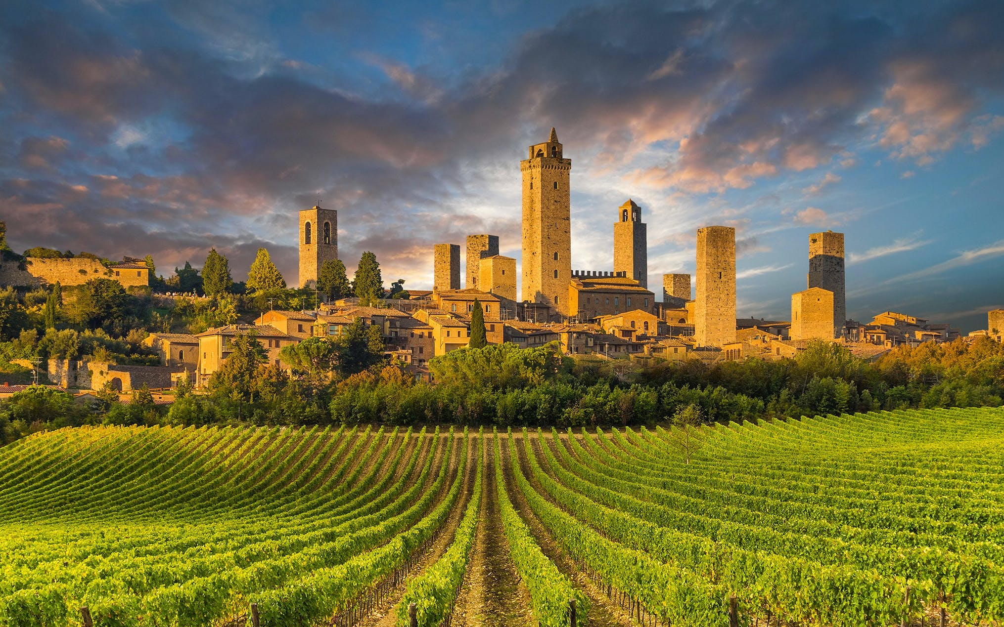 Tuscan Adventure: San Gimignano, Siena and Pisa