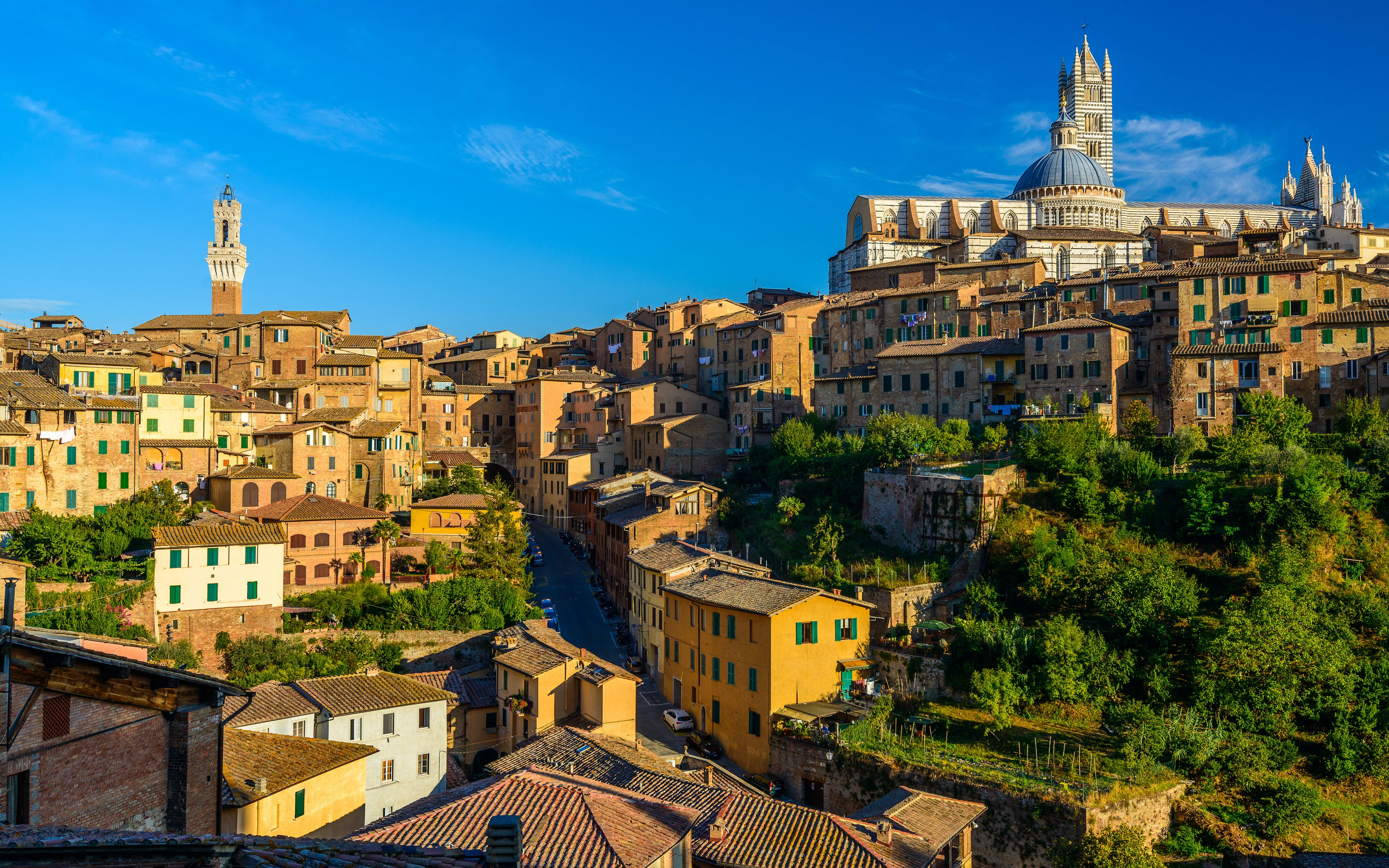 tuscan adventure: san gimignano, siena and pisa-2