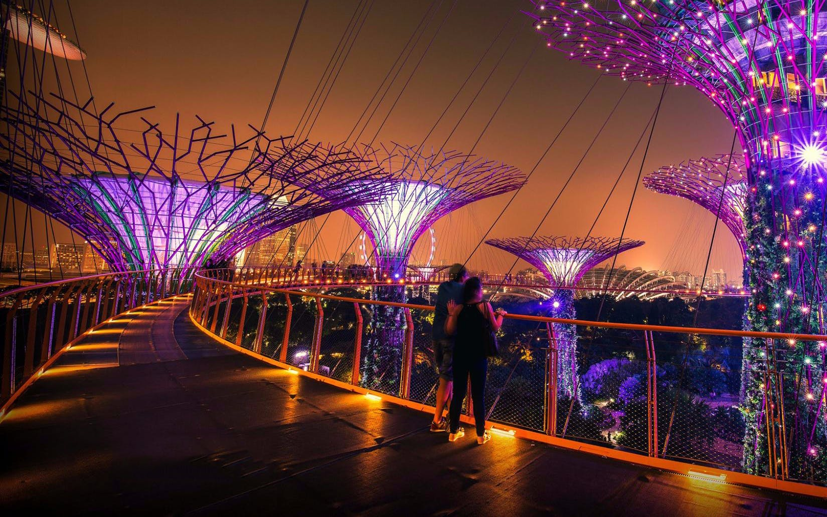 gardens by the bay with ocbc skyway-3