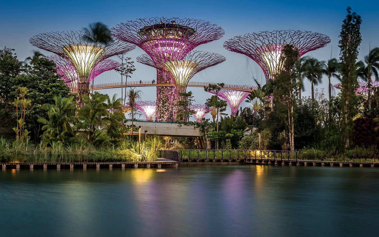 gardens by the bay singapore OCBC Skyway