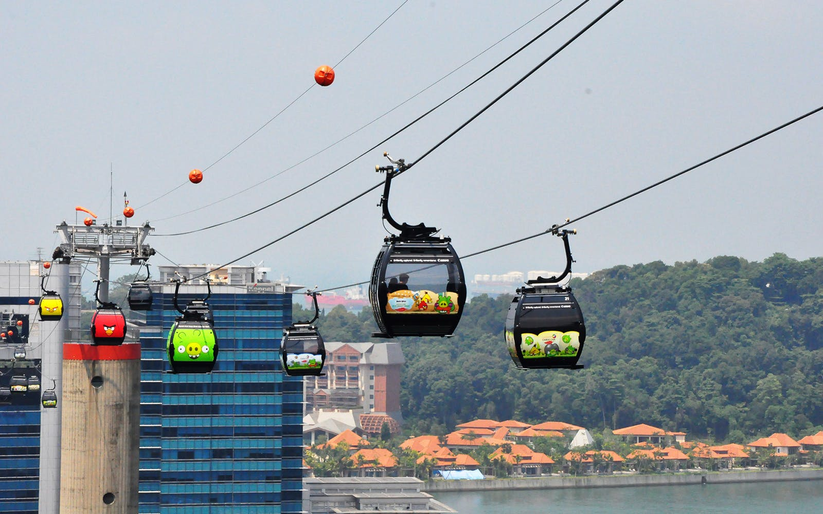 cable car skypass with wings of time and buffet meal-1