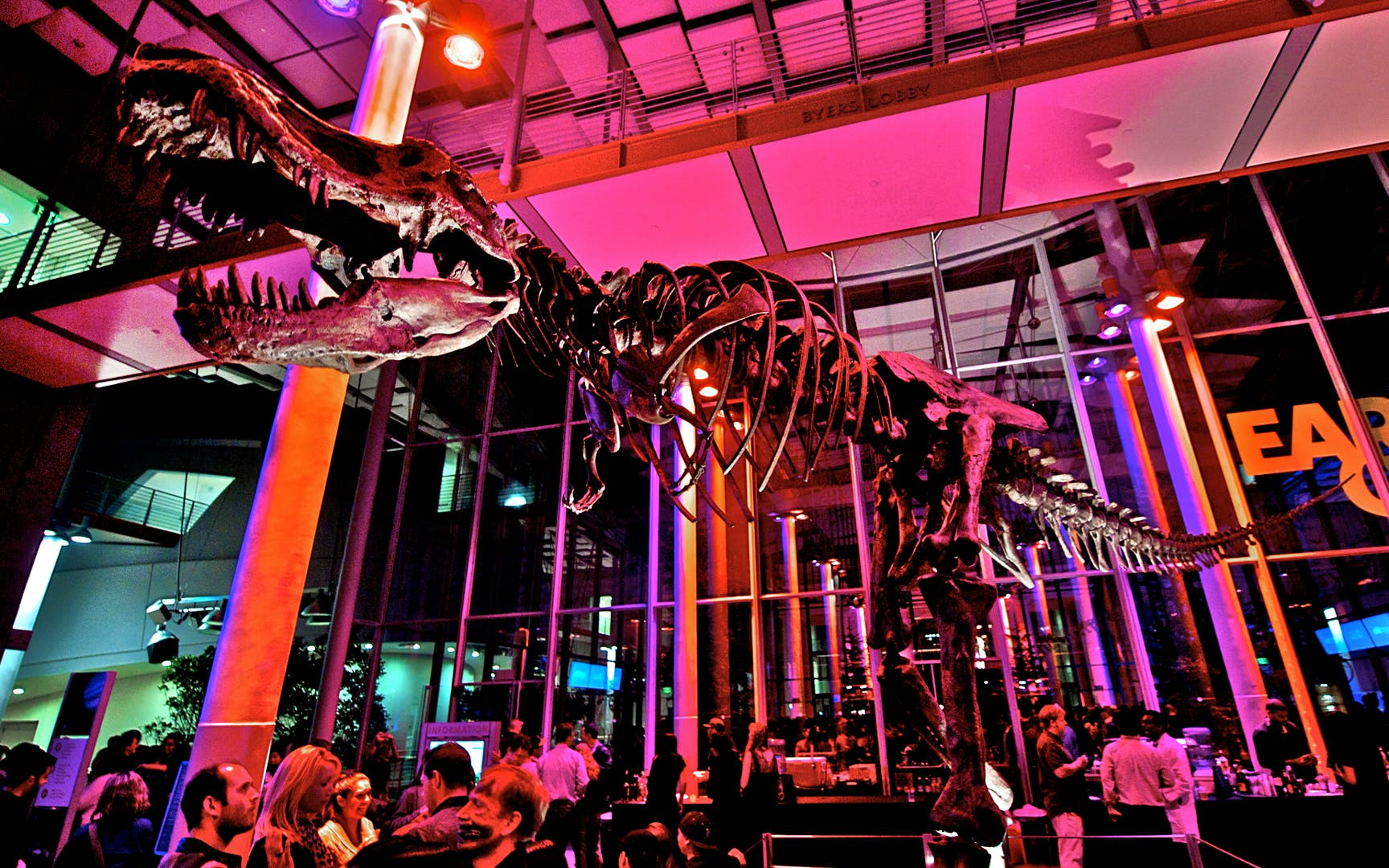 nightlife at california academy of sciences-1