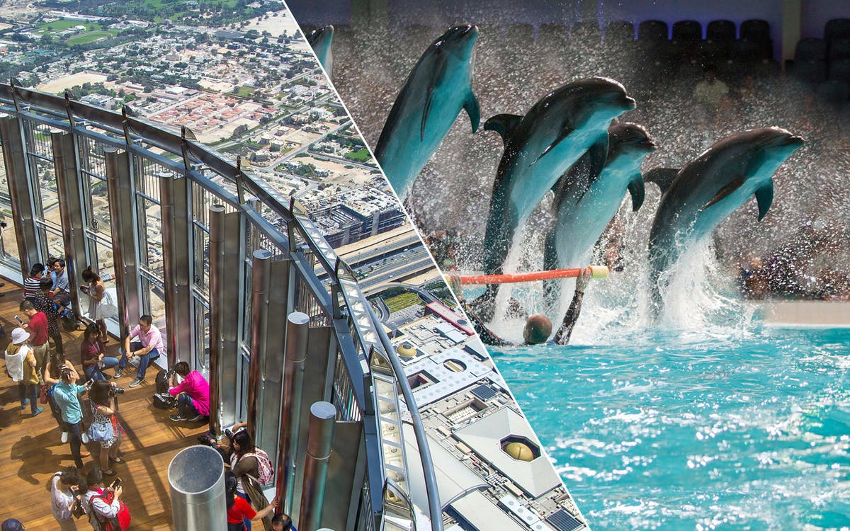 burj khalifa: at the top (level 124 & 125) & dolphin and seal show-1