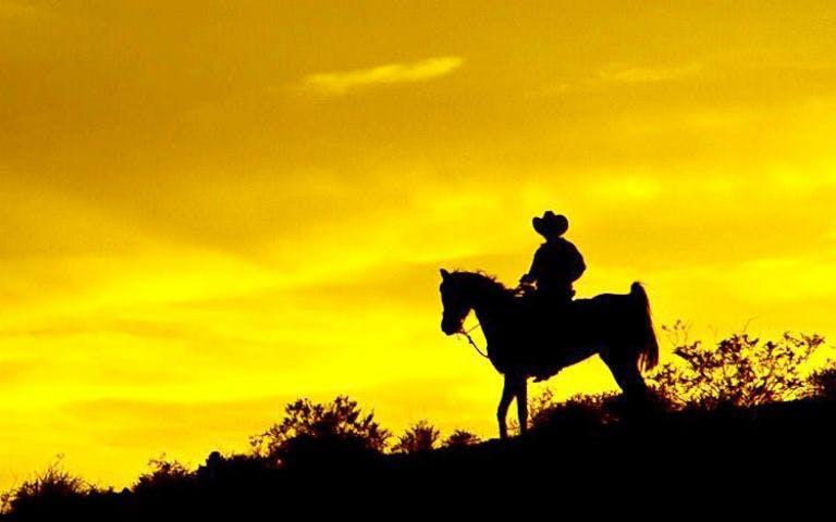 wild wild west - horse ride into sunset-1