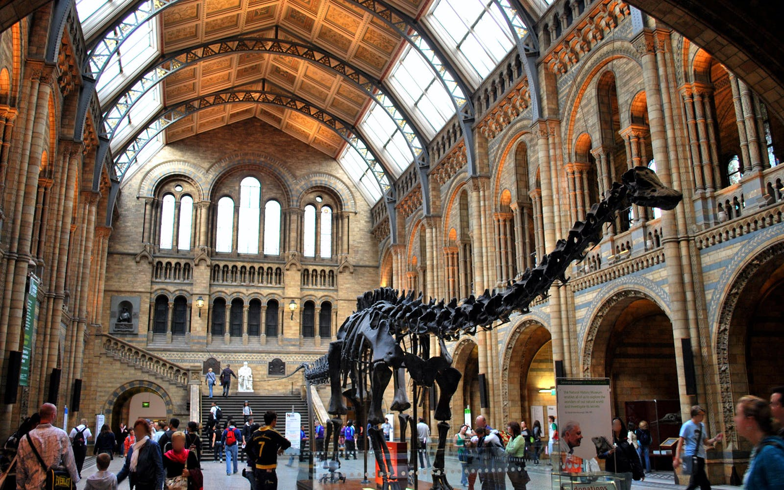 guided tour of the natural history museum-2