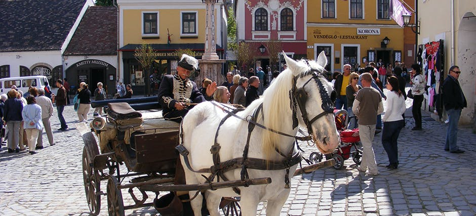 Half Day Trip to Szentendre Artists' Village