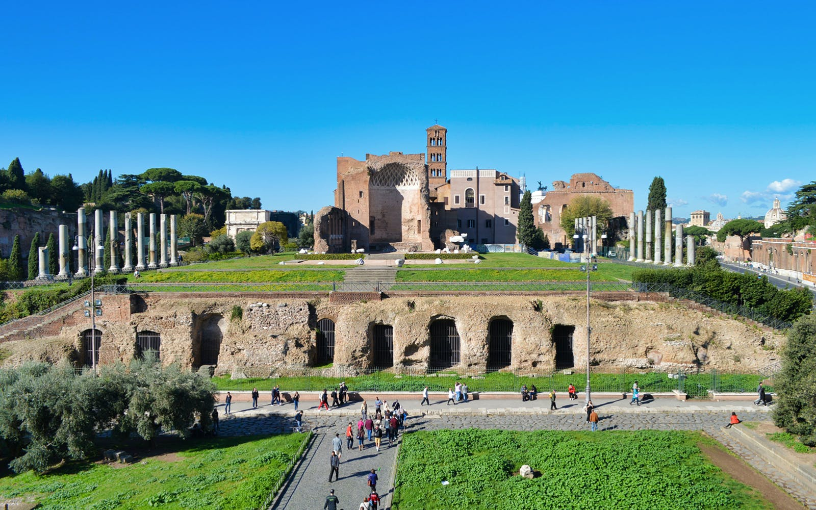 guided walking tour of rome + colosseum, roman forum and palatine hill-3