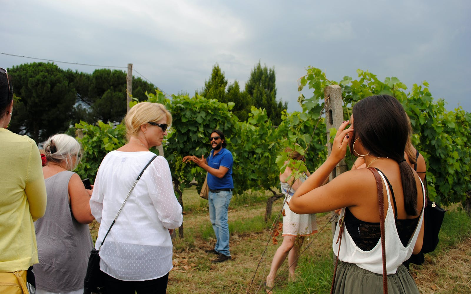 rome countryside vineyard estate tour with wine tasting-3