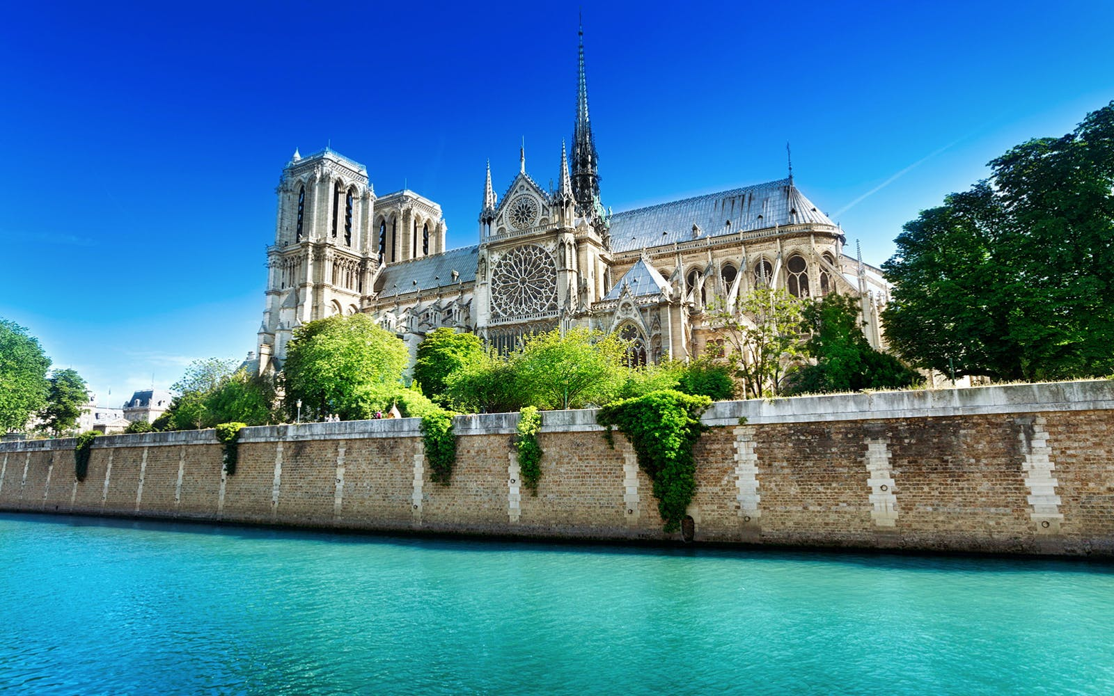 perfect day in paris tour: louvre, notre dame and cruise down the seine-1