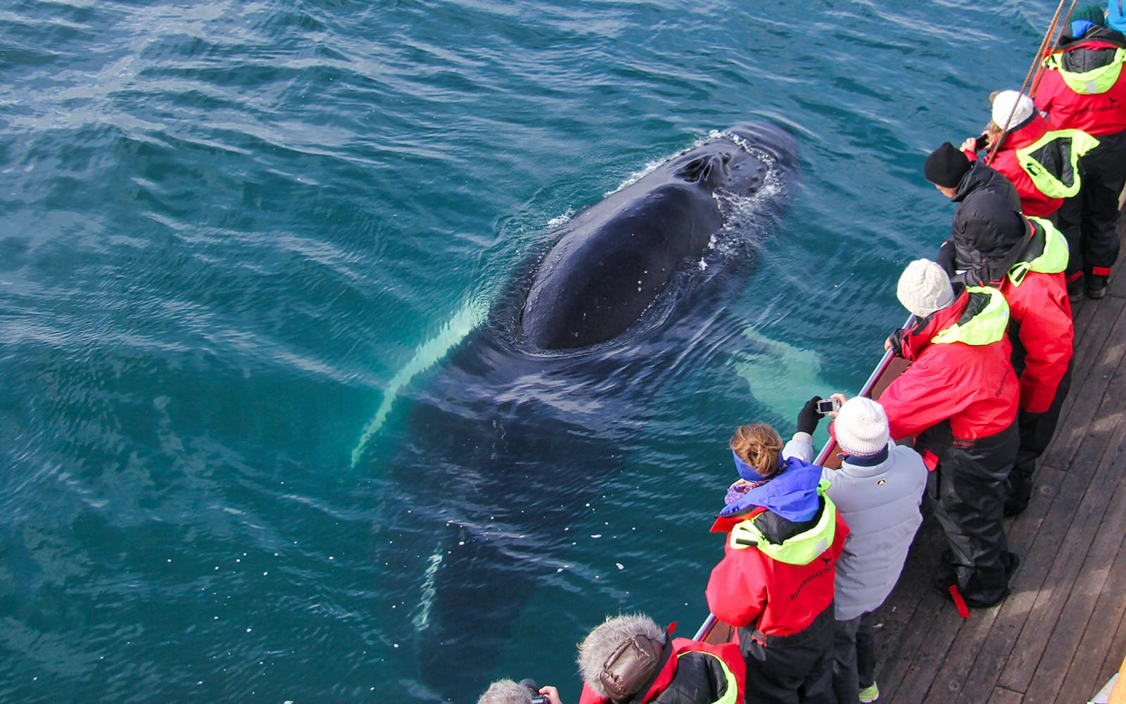 full day tour of golden circle with whale watching adventures-3