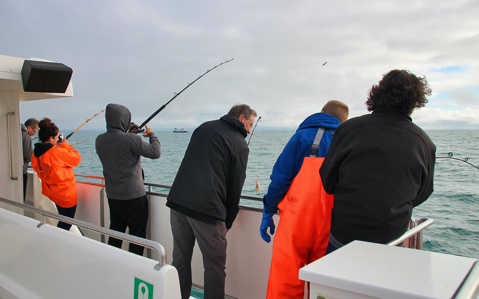 sea angling experience off the reykjavik coast-5