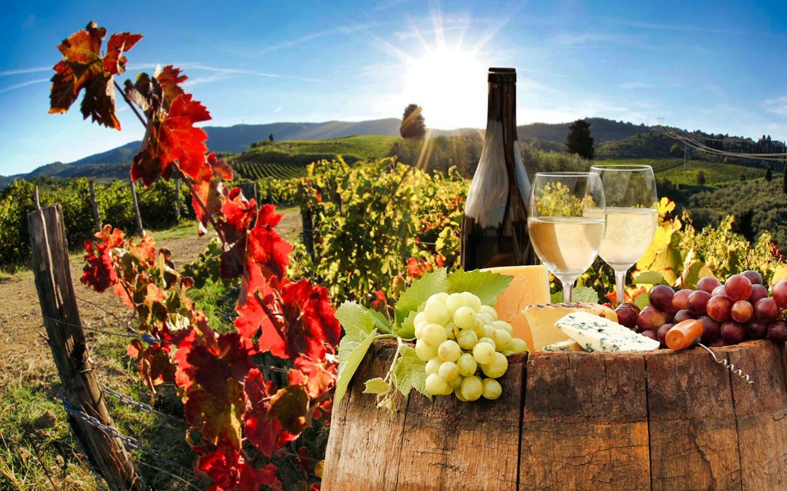 Best of Chianti Day Tour with Typical Tuscan Dinner and Wine Tasting